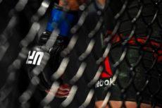 UFC 255: Deiveson Figueiredo vs. Alex Perez
