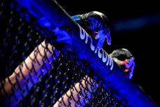 UFC 261: Kamaru Usman vs. Jorge Masvidal